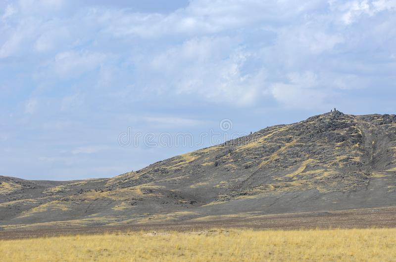 The steppe is woodless, poor in moisture and usually flat with g. Rassy vegetation in the dry climate zone. prairie, veld, veldt stock photo