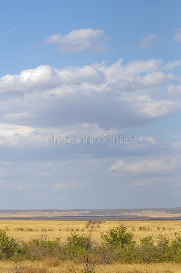 The steppe is woodless, poor in moisture and usually flat with g. Rassy vegetation in the dry climate zone. prairie, veld, veldt royalty free stock photo