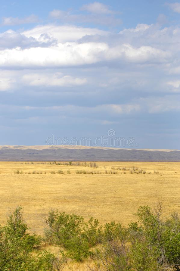 The steppe is woodless, poor in moisture and usually flat with g. Rassy vegetation in the dry climate zone. prairie, veld, veldt royalty free stock image