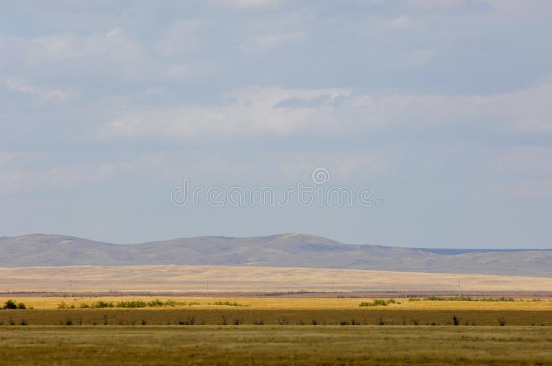 The steppe is woodless, poor in moisture and usually flat with g. Rassy vegetation in the dry climate zone. prairie, veld, veldt royalty free stock images