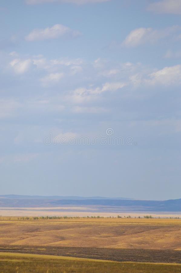 The steppe is woodless, poor in moisture and usually flat with g. Rassy vegetation in the dry climate zone. prairie, veld, veldt royalty free stock photos