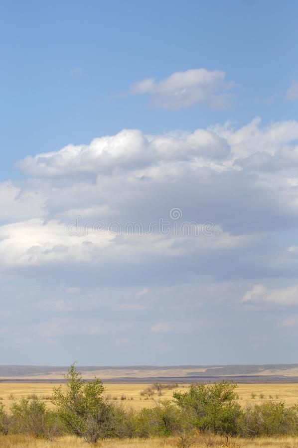 The steppe is woodless, poor in moisture and usually flat with g. Rassy vegetation in the dry climate zone. prairie, veld, veldt stock image