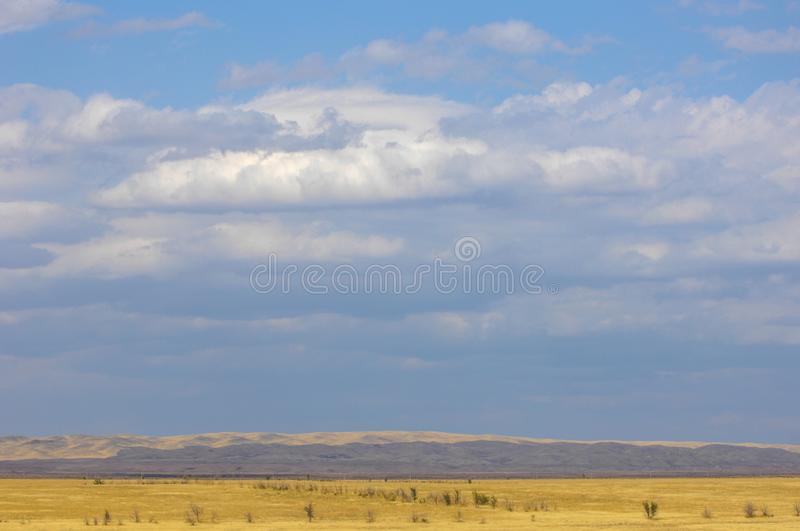 The steppe is woodless, poor in moisture and usually flat with g. Rassy vegetation in the dry climate zone. prairie, veld, veldt stock photography
