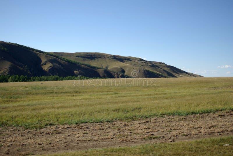 Steppen in Mongolei stockfoto