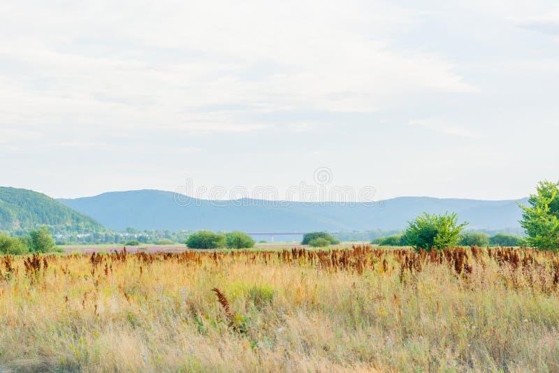 Steppenlandschaft auf der Bank der Fluss Sok Samara-Region Russland lizenzfreie stockfotos