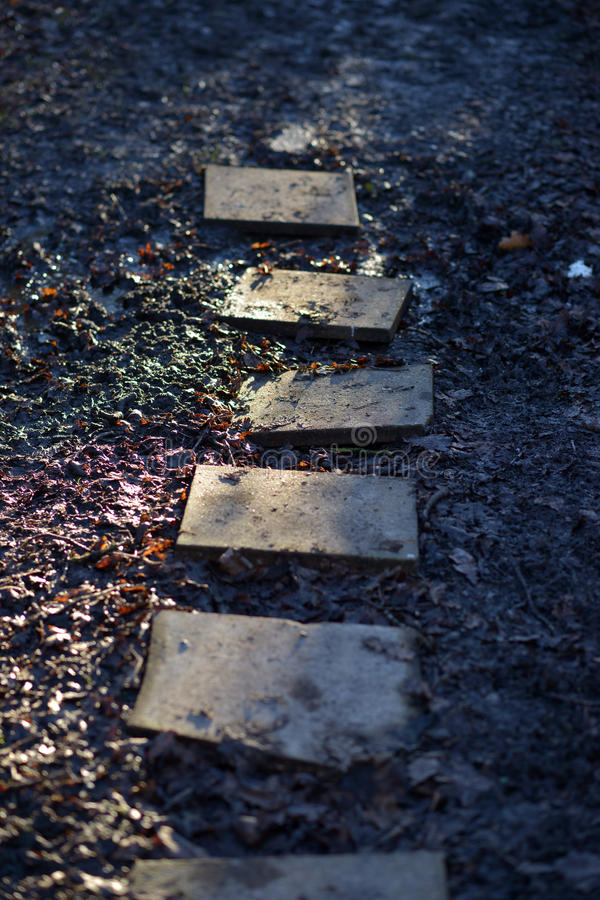 Stepping stones. Five square stepping stones over muddy path royalty free stock photography