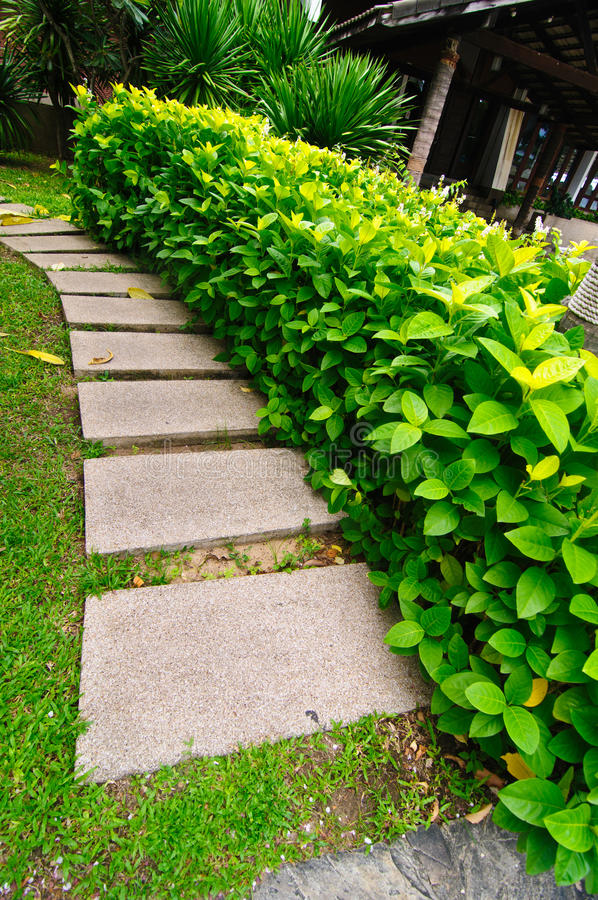 Stepping stones path in the garden royalty free stock photo