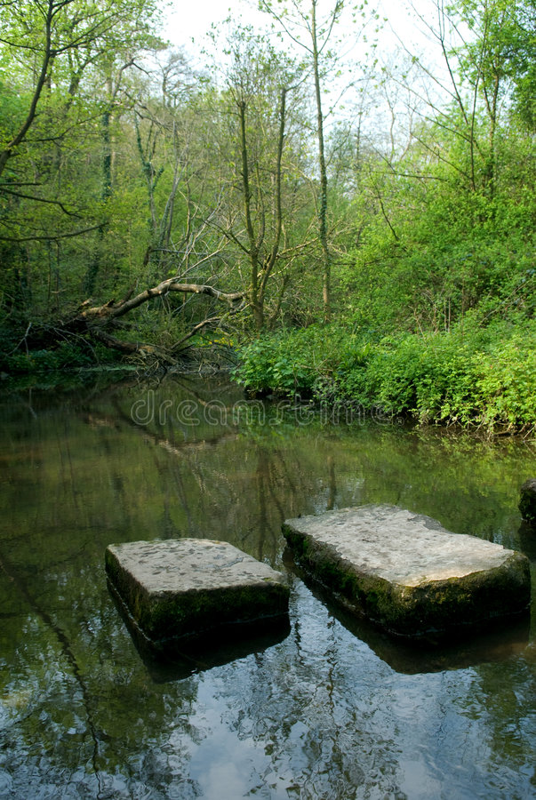 Stepping stones at Roche Abbey royalty free stock photography
