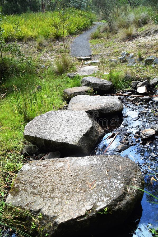 Stepping stones. Several stepping stones or rocks provide a way across a stream. They end in a path that meanders off into the bush. This also symbolises taking royalty free stock photo