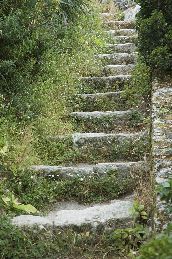 Steps royalty free stock photography