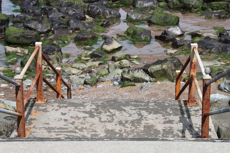 steps imagen de archivo