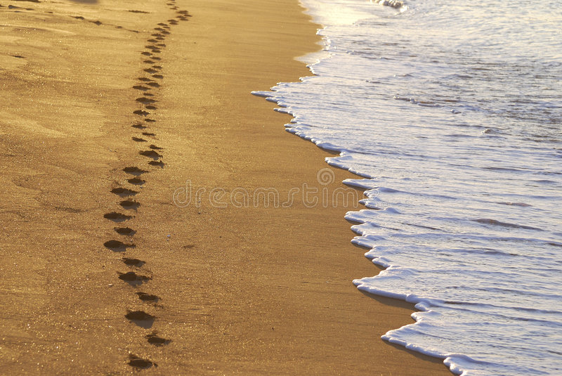 Download Steps On A Beach Stock Photos - Image: 3198733