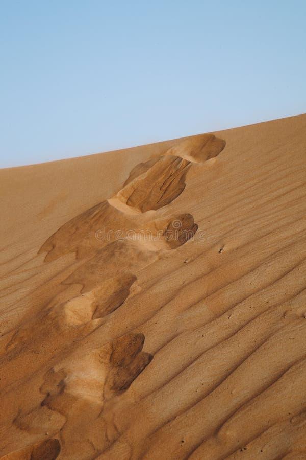Steps In The Desert. Stock Image