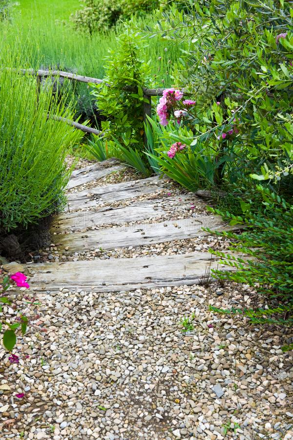 Steps in flowering garden in Tuscany royalty free stock photos