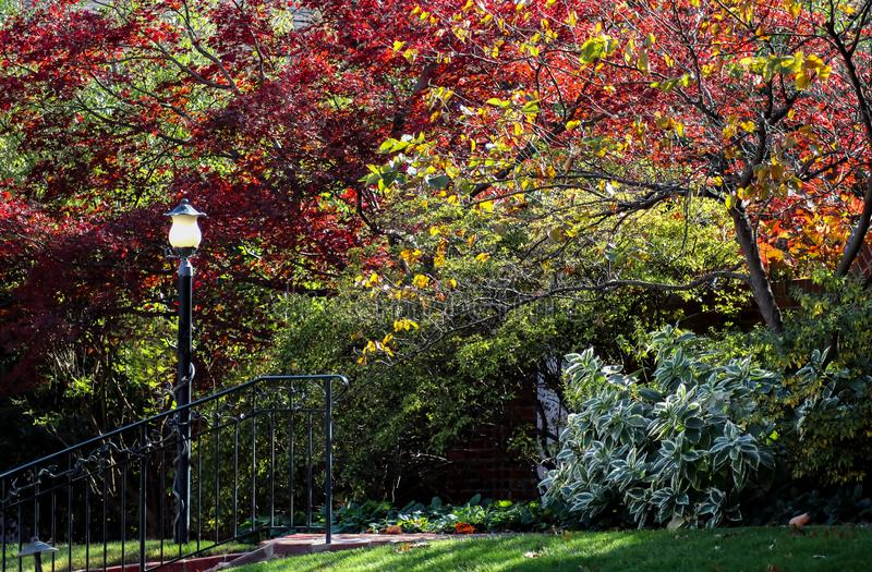 Steps with metal railing and lamp post with lush colorful autumn trees and foliage stock photography