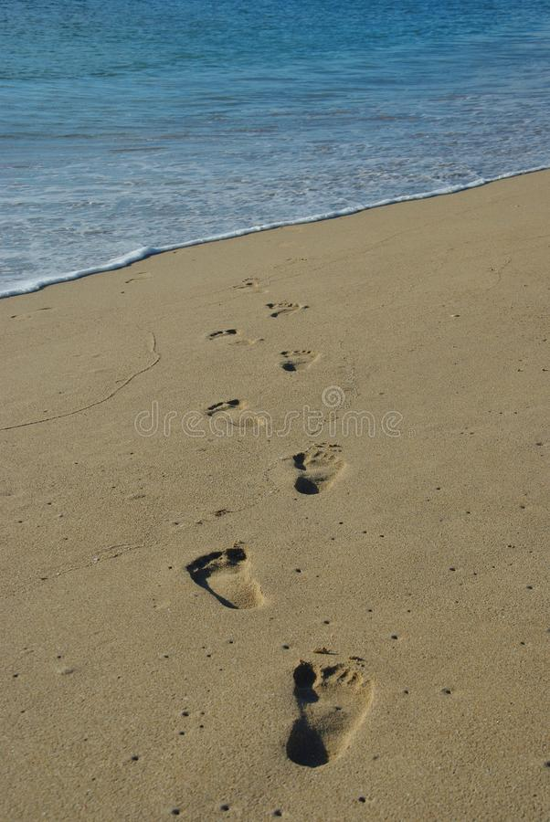 Download Steps in the sand stock photo. Image of dream, beach - 14290150