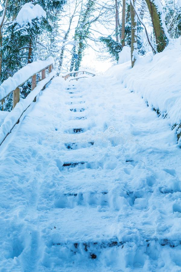 Steps in the snow in park, the snow on the stairs. Cold, outdoor, winter, covered, freeze, nature, season, weather, white, architecture, background, beautiful stock photo