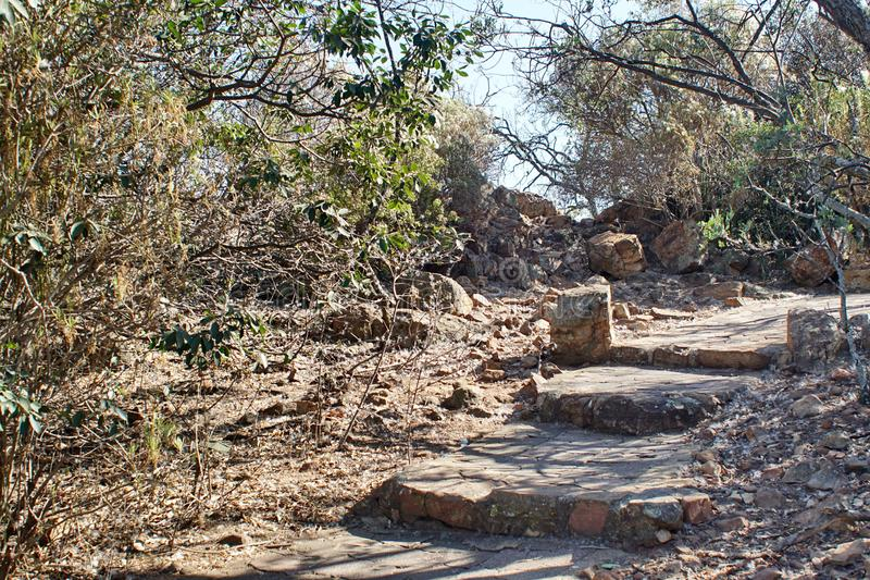 Trail in the botanical garden in Pretoria, South Africa. Steps on a stone trail in the botanical gardens in Pretoria, South Africa royalty free stock image