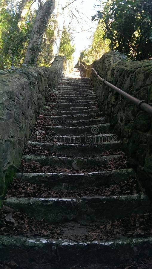 Steps to Heaven stock photos