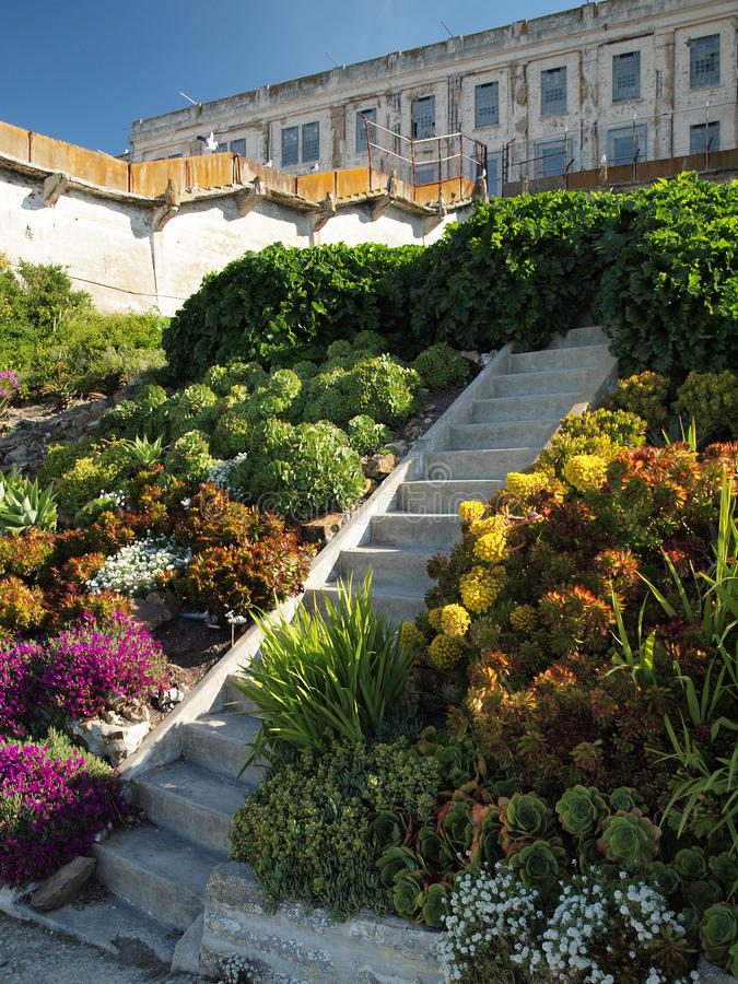 Download Steps up Alcatraz Garden stock image. Image of foliage - 19490903