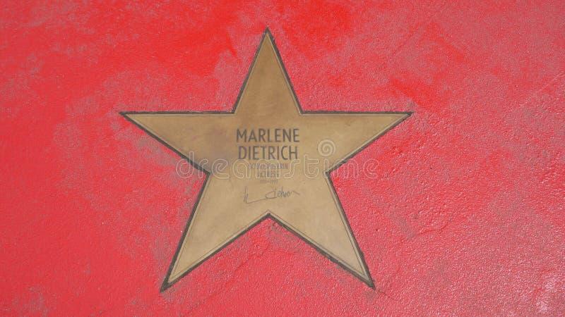Ster van de Sterren van Marlene Dietrich At Boulevard der, Gang van Bekendheid in Berlijn stock afbeeldingen