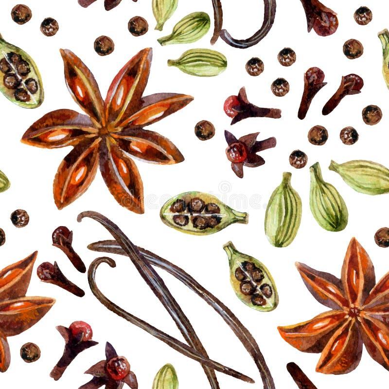 Steranijsplant, pimentbes, vanille, kruidnagels en cardamon royalty-vrije illustratie