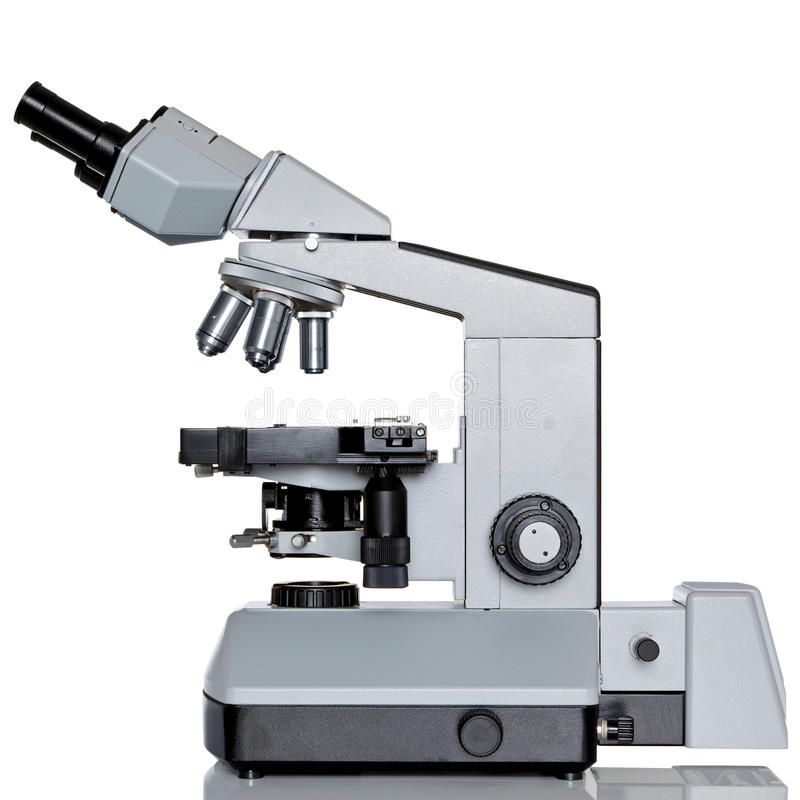 Free Stereo Microscope Isolated On White Stock Image - 24724361