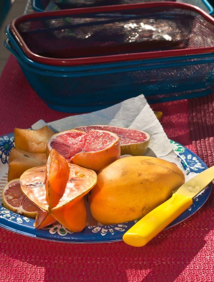 Sterfruit en roze grapefruit voor duidelijke verkoop bij tropische landbouwers stock foto's