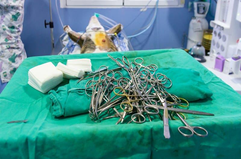 Sterilt kirurgiskt material ?ppnade f?r en tid sedan royaltyfria bilder