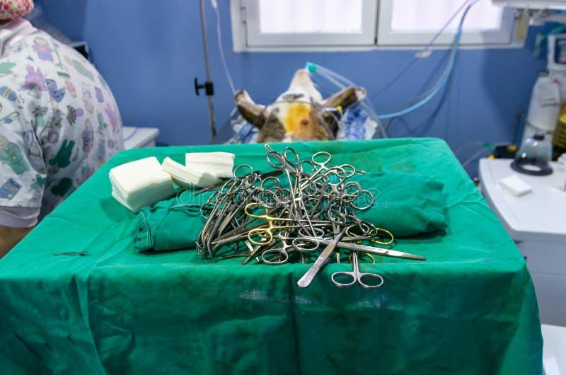 Sterilt kirurgiskt material ?ppnade f?r en tid sedan fotografering för bildbyråer