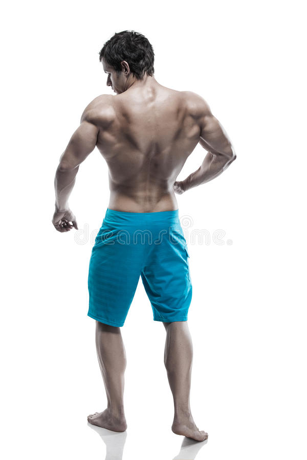 Sterke Atletische Mensengeschiktheid ModelTorso die grote achterspieren tonen stock foto