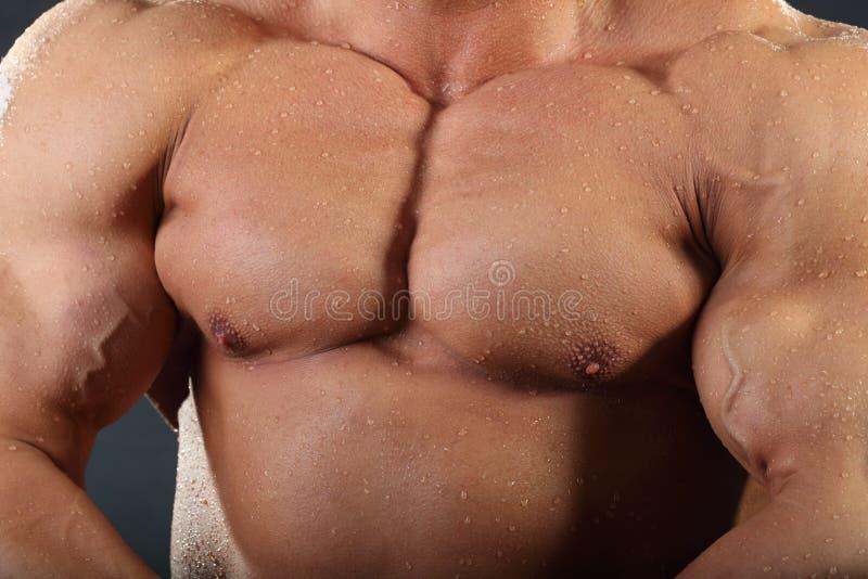 Sterke borst en handspieren van bodybuilder stock foto