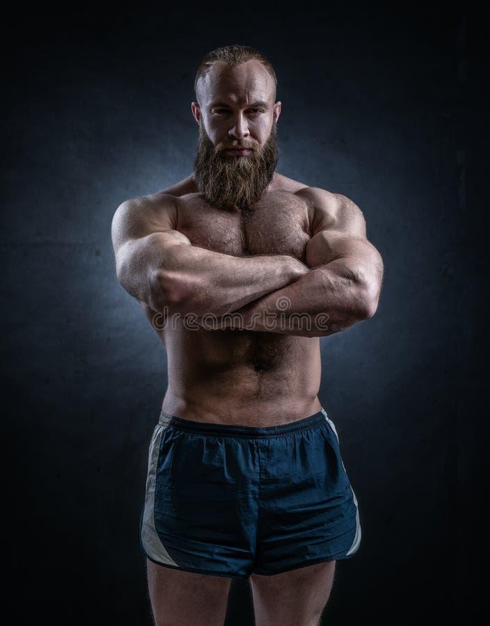 Sterke gebaarde mens met perfecte abs, schouders, bicepsen, triceps stock foto's