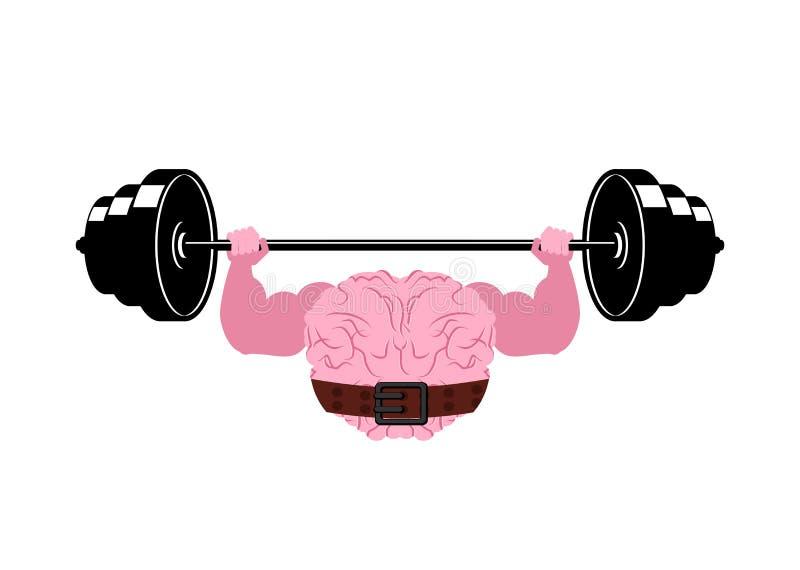 Sterke hersenen en barbell Krachtige gepompte menselijke hersenen vector illustratie