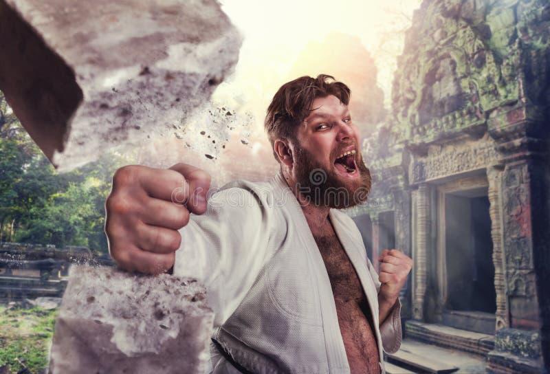 Sterke karateka breekt een baksteen royalty-vrije stock afbeelding