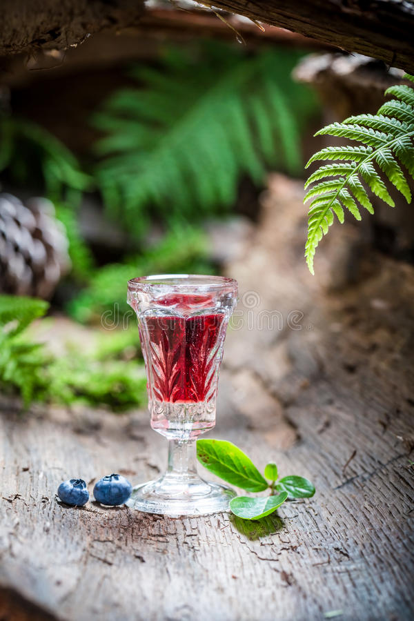 Sterke likeur met alcohol en bosbessen stock fotografie