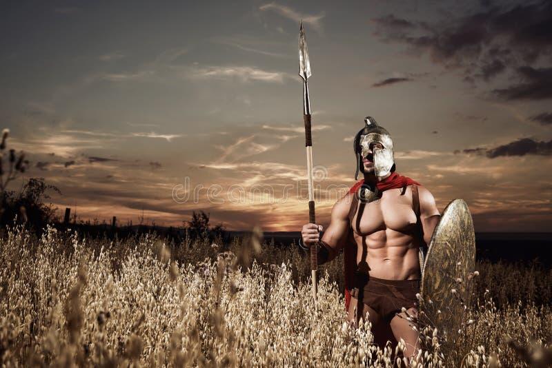 Sterke Spartaanse strijder in veldtenue met een schild en spear royalty-vrije stock afbeeldingen