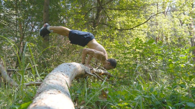 Sterke spiermens die een handstand in een bos Spier mannelijke geschiktheidskerel doen die stunts op logboek doen bij het hout at stock foto's