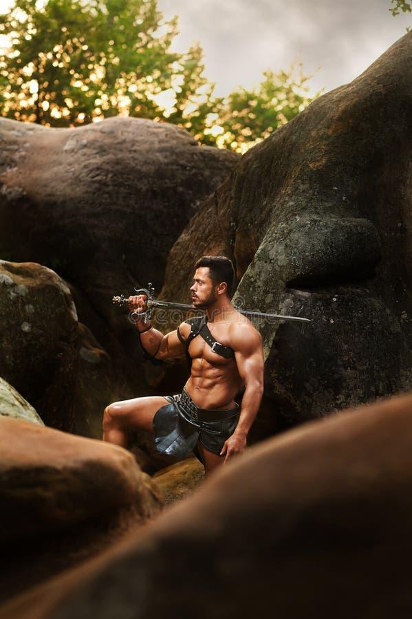 Sterke strijder bij het hout stock foto