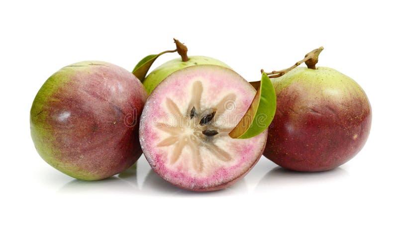 Stern Apple, Chrysophyllum Cainito stockfotos