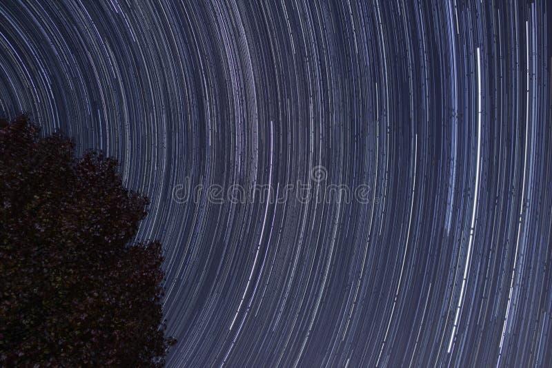 Sternbewegung wird durch Earths Umdrehung und lange Berührung der Kamera verursacht stockbild