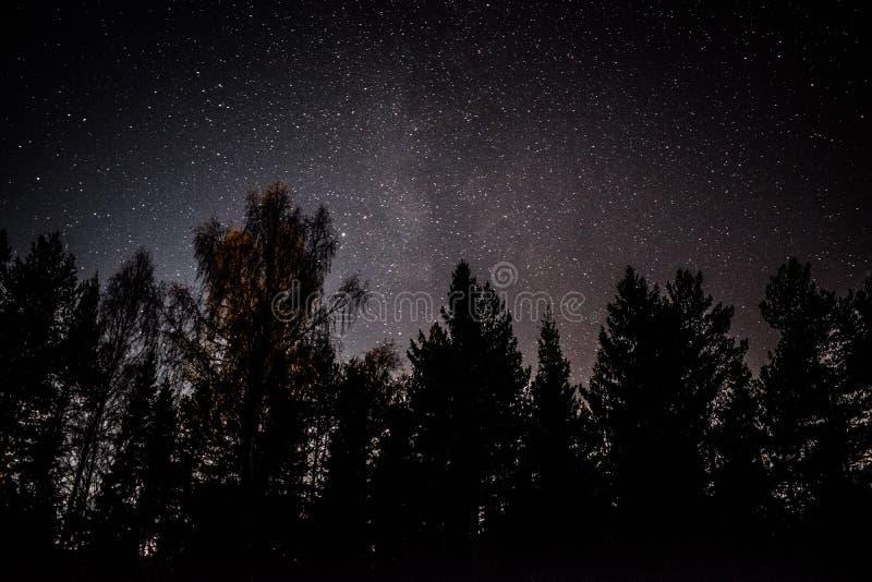 Sterne nachts in Norwegen milkyway stockbild