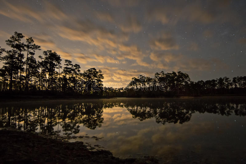 Sterne u. Wolken über Sumpfgebieten stockbilder