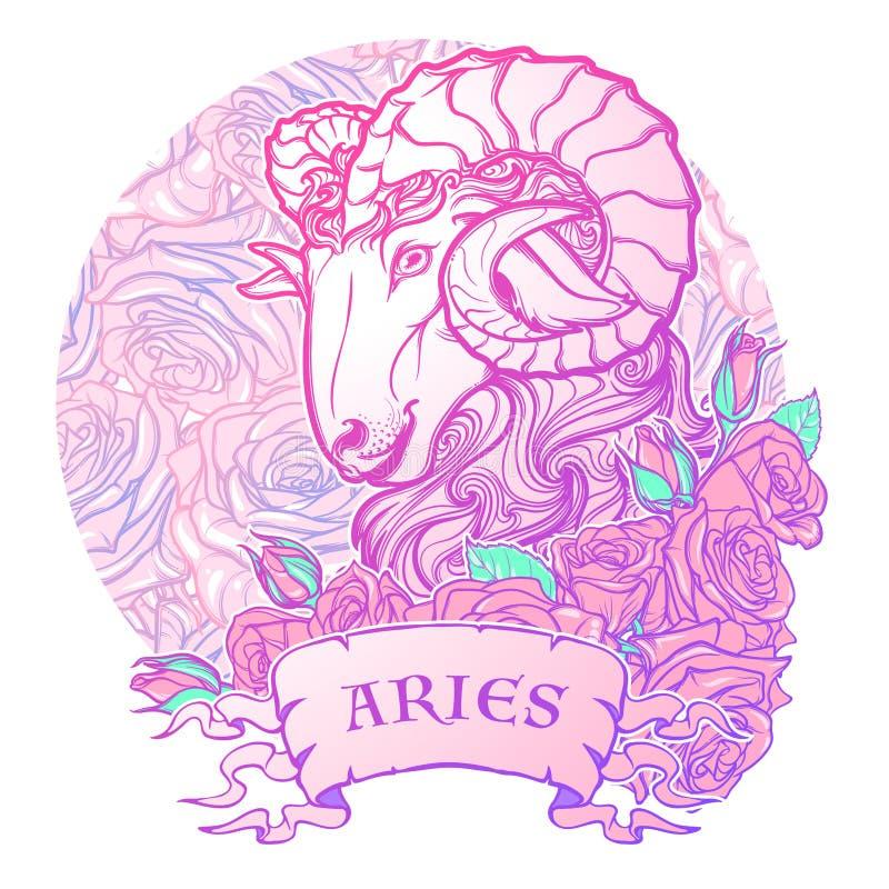Sternzeichen des Widders mit einer dekorativen Rahmenrosen Astrologie-Konzeptkunst Tätowierung Design lizenzfreie abbildung