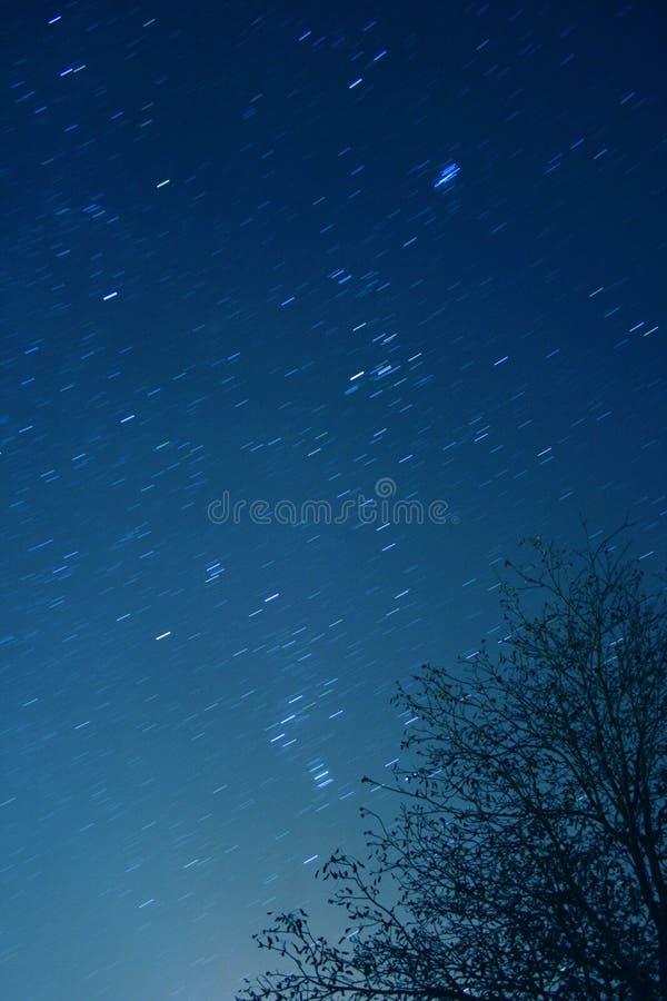 Sterren bij nacht stock foto