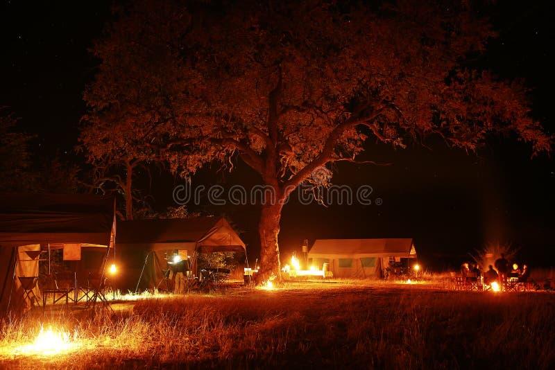 Sterrenavond in Centraal-Afrika Botswana zonder lichtvervuiling royalty-vrije stock foto