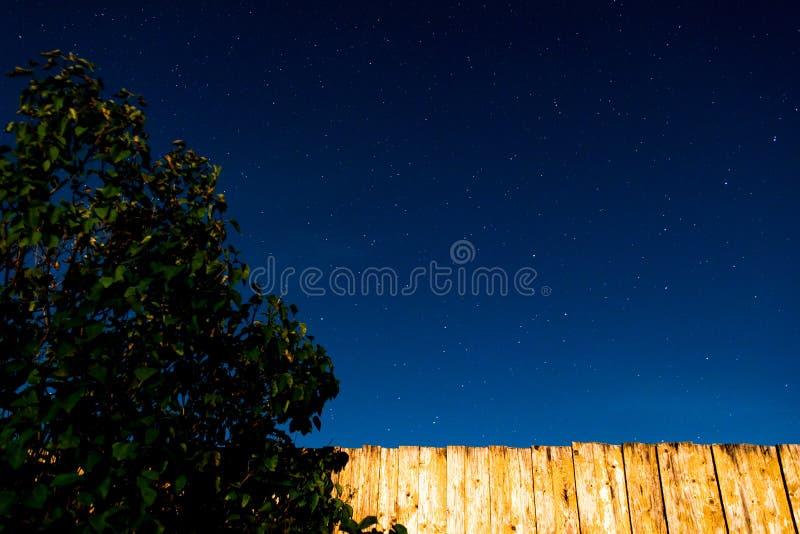 Sterrige hemel met gele omheining en struik royalty-vrije stock afbeeldingen