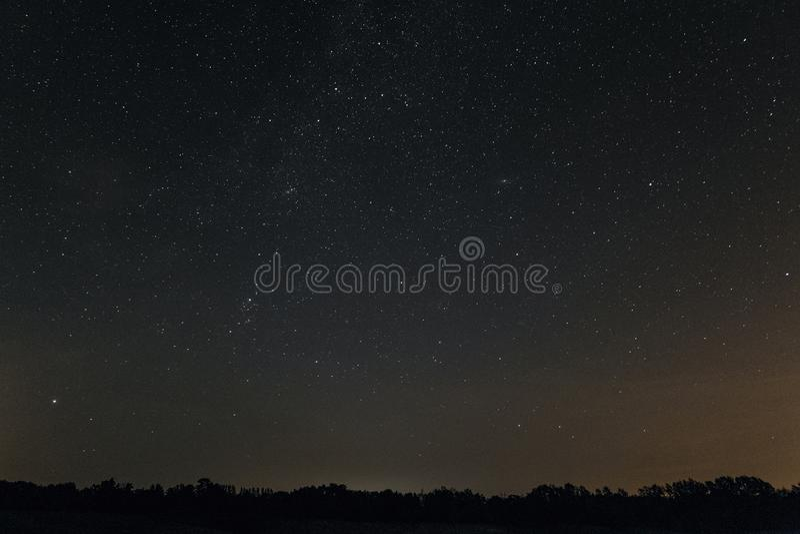 Sterrige nacht over de horizon met bomen stock foto's