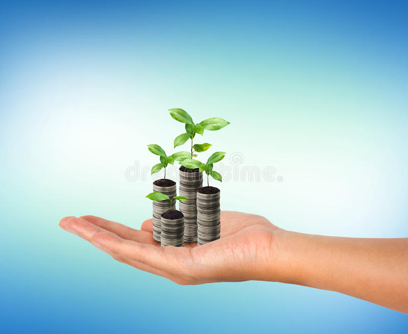 Sterta srebna moneta i mały roślina przyrost w kobiety ręce zdjęcie royalty free