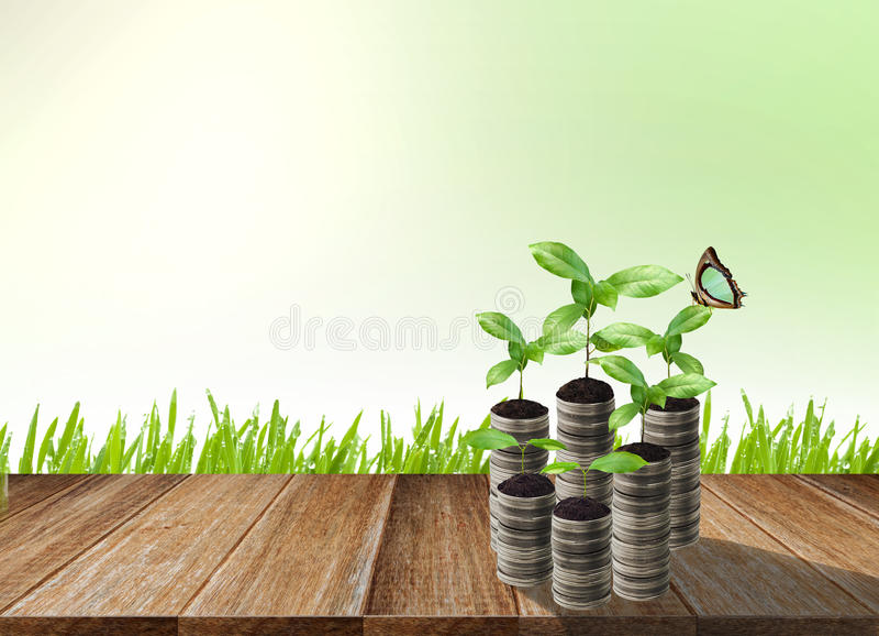 Sterta srebna moneta i mały rośliny pojęcie zdjęcie stock